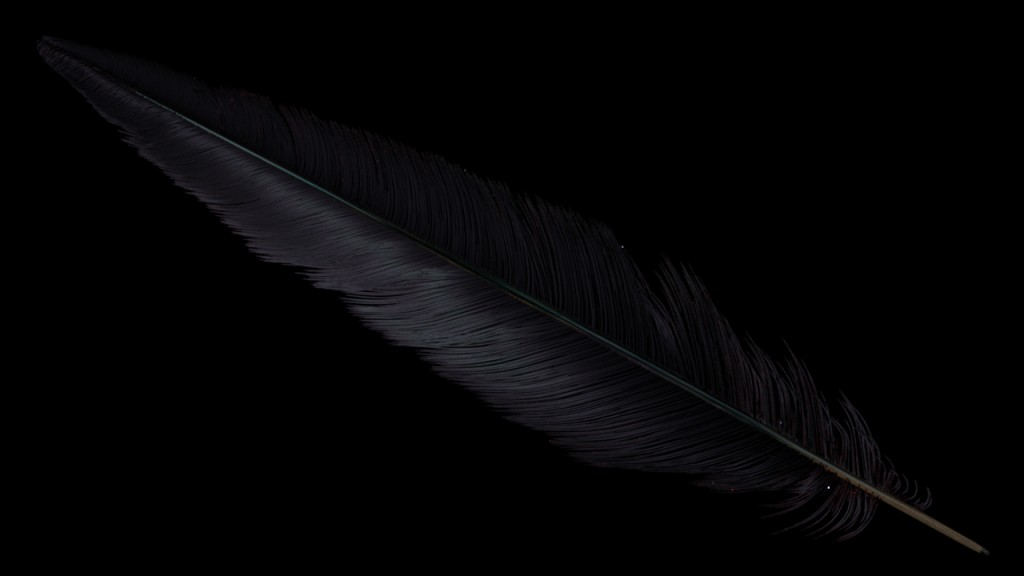 feather_fireflies1