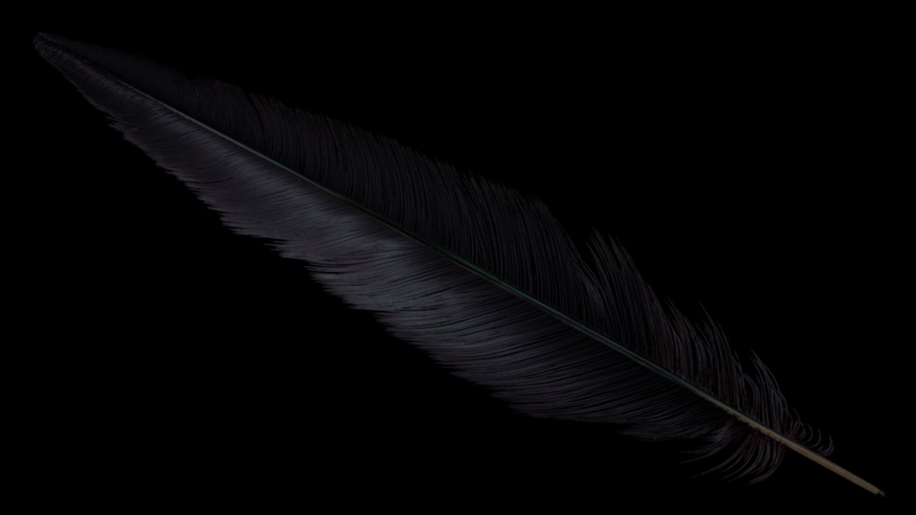 feather_fireflies2