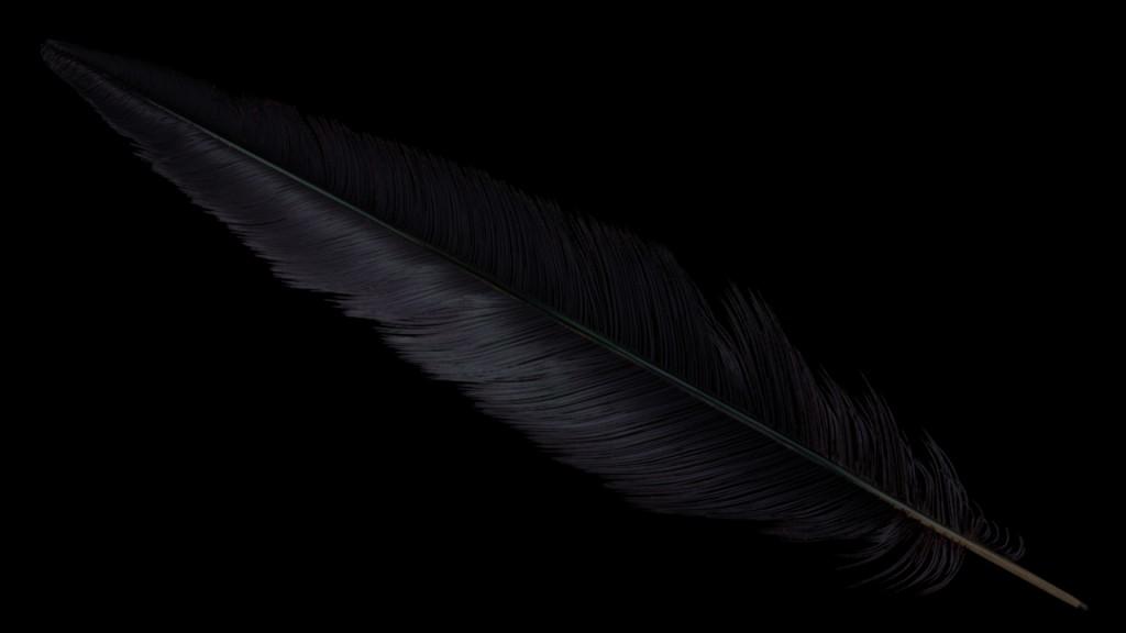 feather_fireflies2